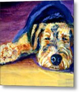 Snooze Airedale Terrier Metal Print by Lyn Cook