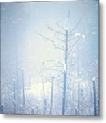 Snow And Remnants Of The Fire 2 Metal Print