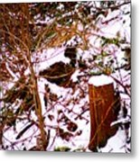 Snow And Tree Trunk Metal Print
