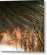 Snow And Wind Metal Print