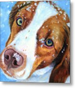 Snow Baby - Brittany Spaniel Metal Print by Lyn Cook