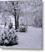 Snow Bush Metal Print