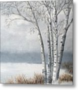 Snow Coming Into The South Shore  Metal Print