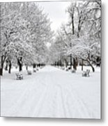 Snow Covered Benches And Trees In Washington Park Metal Print