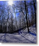 Snow Covered Path Metal Print