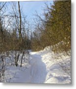 Snow Covered Pathway Metal Print by Richard Mitchell