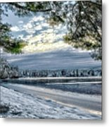 Snow Covered Pines Metal Print