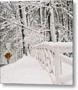 Snow Curve Metal Print