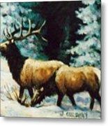 Snow Elk Metal Print
