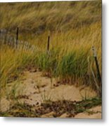 Snow Fence In Sand Metal Print