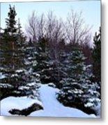 Snow For Christmas Metal Print