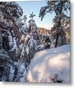Snow In Saxon Switzerland Metal Print