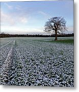 Snow In Surrey Countryside Metal Print