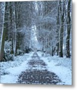 Snow In The Avenue Metal Print