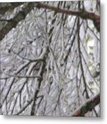 Snow In Yosemite Metal Print