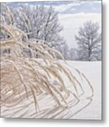 Snow Laden Metal Print