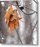 Snow Leaves Metal Print