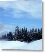 Snow Light Metal Print