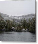 Snow On Cedars Metal Print