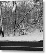 Snow On Fallen Tree Metal Print