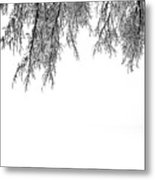 Snow On The Branches Two  Metal Print