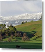 Snow On The Great Western Tiers, Tasmania Metal Print