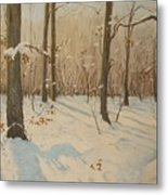 Snow On The Wood Metal Print