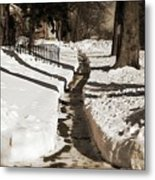 Snow Paths And Winter Shadows Metal Print