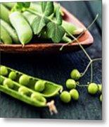 Snow Peas Or Green Peas Still Life Metal Print