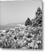 Snow Settles On The Lake Shore Metal Print