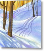 Snow-shadows Metal Print