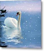 Snow Swan Swim Metal Print