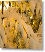 Snow The Day After Metal Print