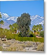 Snow-topped Mountains From Tahquitz Canyon Way In Palm Springs-california  Metal Print