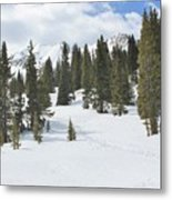 Snow Trail Metal Print