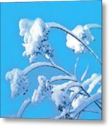Snow Tree Metal Print