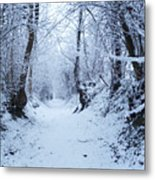 Snow Walk Metal Print