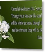 Snow White Flowers Is. 1v18 Metal Print by Linda Phelps