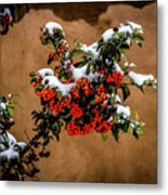 Snowberries Metal Print