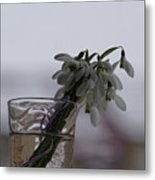 Snowdrops Bouquet In The Glass Metal Print