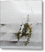 Snowfall Metal Print