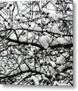Snowfall On Branches Metal Print