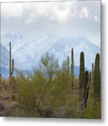 Snowfall On The Mountains Metal Print