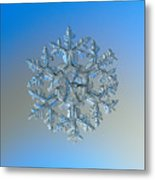 Snowflake Photo - Gardener's Dream Metal Print