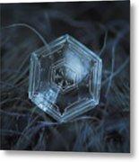 Snowflake Photo - Hex Appeal Metal Print by Alexey Kljatov