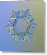 Snowflake Photo - Sunflower, Golden Version Metal Print by Alexey Kljatov