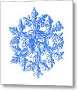 Snowflake Vector - Gardener's Dream White Version Metal Print