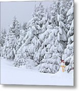 Snowmen In France Metal Print