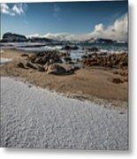 Snowy Beach Metal Print