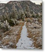 Snowy Colorado Trail Metal Print